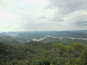 [Blog] 山歩き再開!
