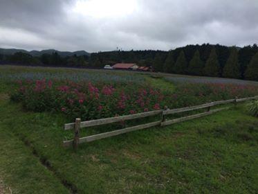 [Blog] 青山リゾート・至福の2日間✨