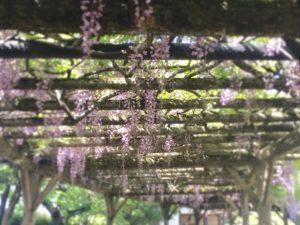 [Blog] 初夏の一泊旅行